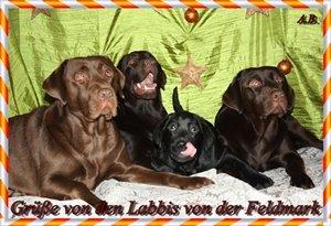 An den Beitrag angehängtes Bild: http://img23.dreamies.de/img/466/b/f3vvhl7p018.jpg