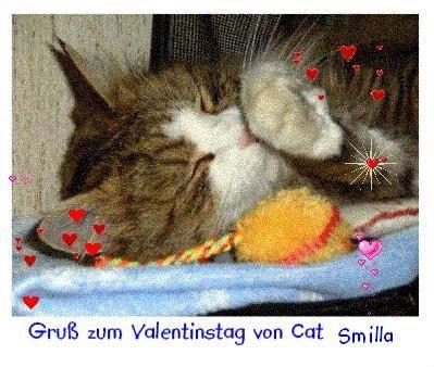 Euch Meine Freunde Wünsche Ich Einen Kuscheligen Valentinstag Und Viele  Herrlich Duftende Blumen An Deren Ihr Schnuppern Könnt.