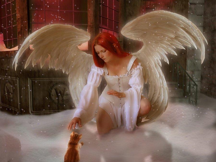 Открытки для девушек ангел 916